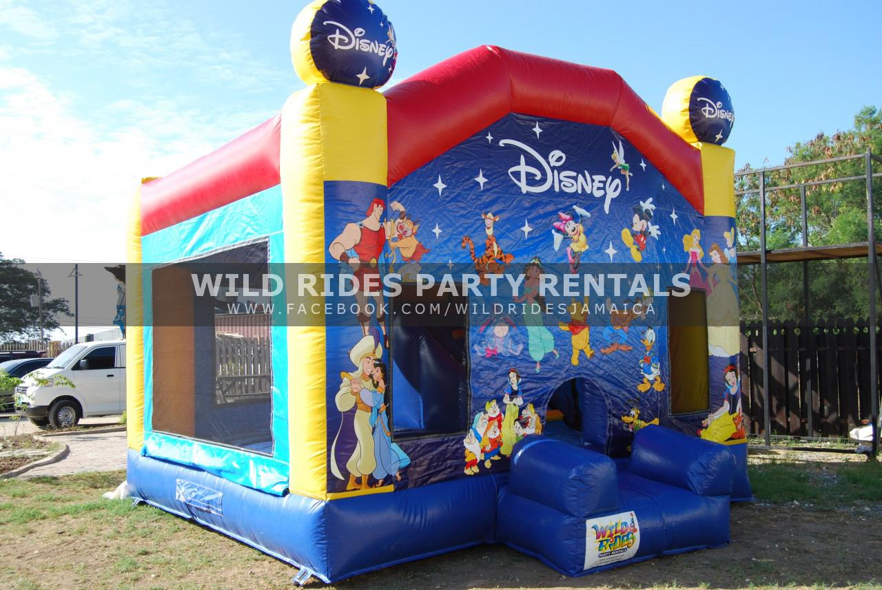 Walt Disney Enclosed Inflatable Castle Bouncer