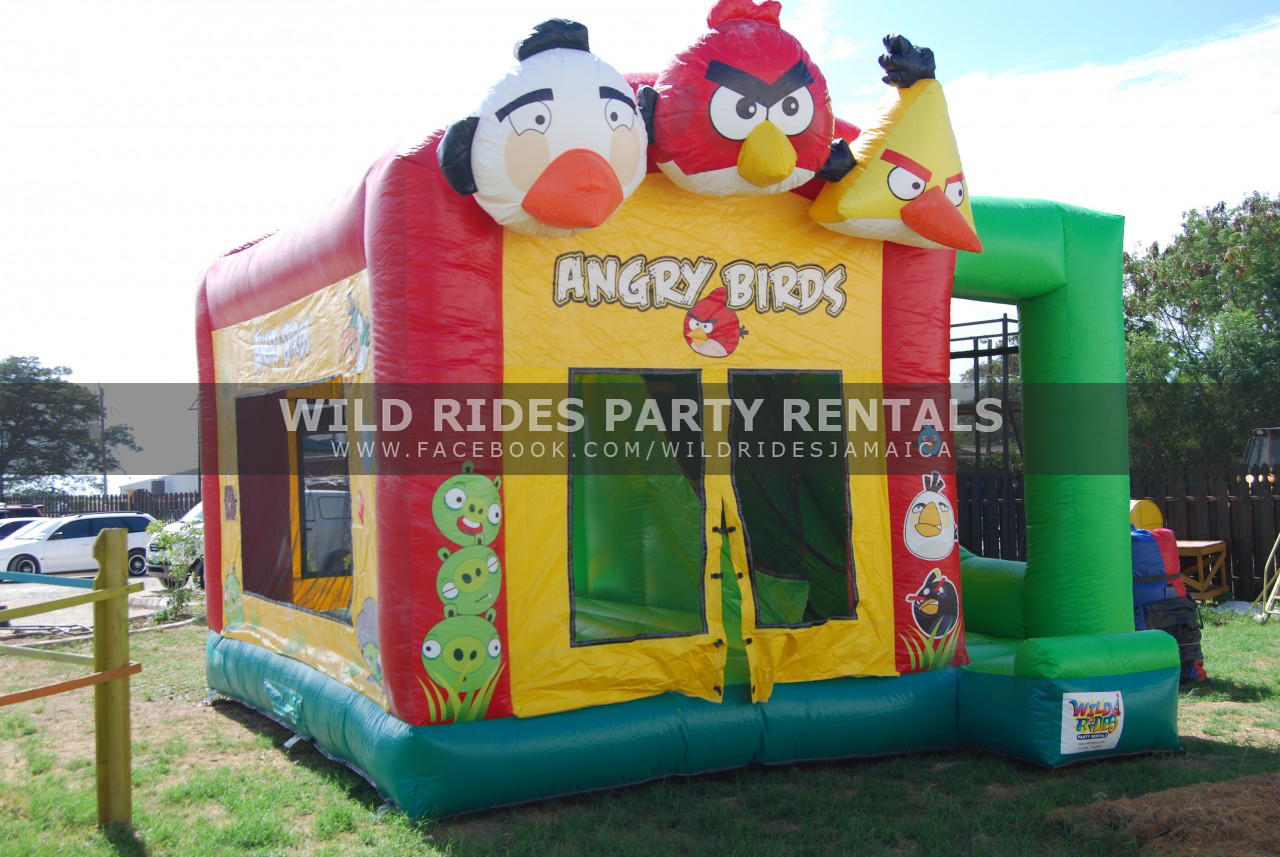 Angry Birds Bouncer w/ Dry Slide Combo