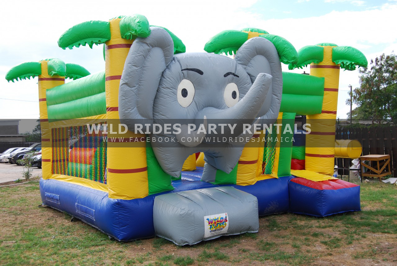 Mini Jungle Obstacle Inflatable Combo w/ Dry Slide