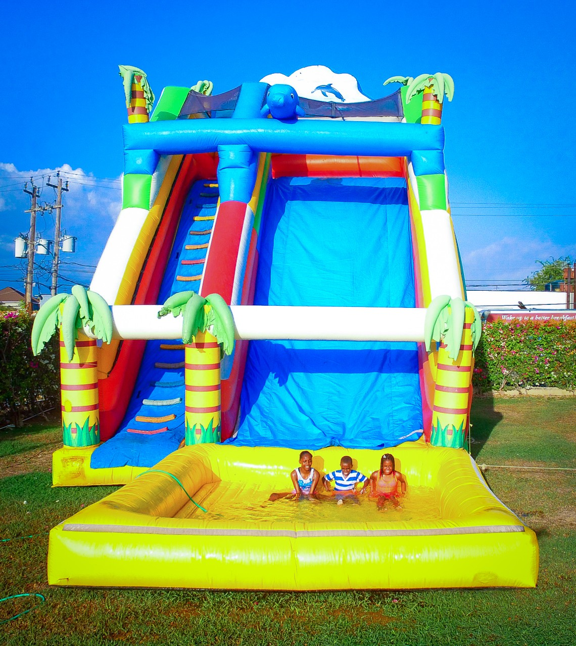 30 Ft Tropical Inflatable Water Slide w/ Pool