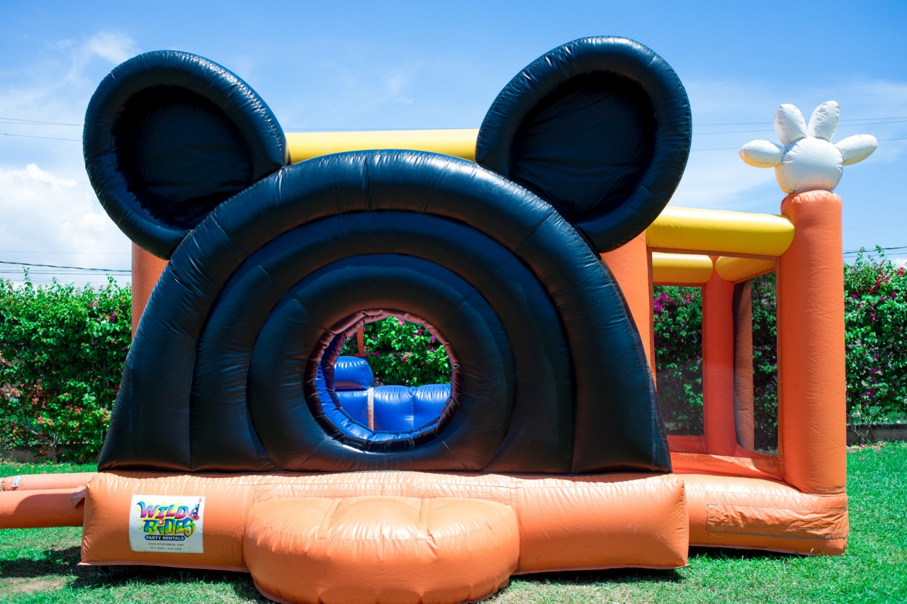 Disney's Mickey Mouse Clubhouse Inflatable Bouncer Castle w/ Dry Slide