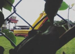 beyond the jungle the grounds of wild rides party rentals staytuned zoomi 263x190 - Beyond the jungle,  the grounds of wild Rides Party Rentals.  #staytuned  #zoomi...