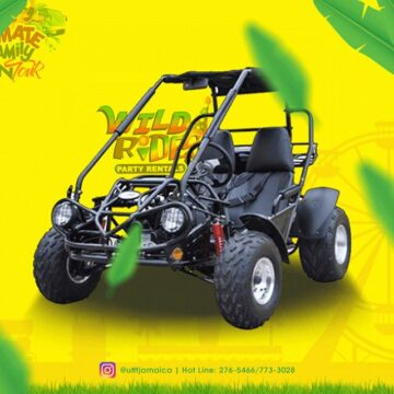 just imagine the thrill on any of our gokarts you your friend and a cool refr 360x360 - Just imagine the thrill on any of our #gokarts; You, your friend and a cool refr...