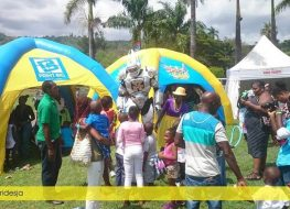 over 50 inflatables and party rentals for birthday parties corporate events and 263x190 - Over 50 Inflatables and Party Rentals for Birthday Parties, Corporate Events and...