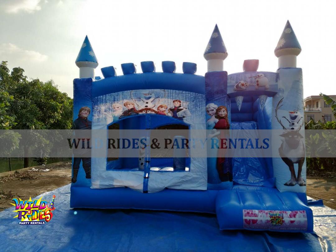 Frozen Castle Bouncer w/Dry Slide