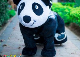 Perfect Panda Promises to keep your child entertained whether you 263x190 - Perfect Panda Promises to keep your child entertained whether you are planning a...