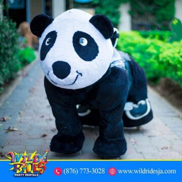 Perfect Panda Promises to keep your child entertained whether you 360x360 - Perfect Panda Promises to keep your child entertained whether you are planning a...