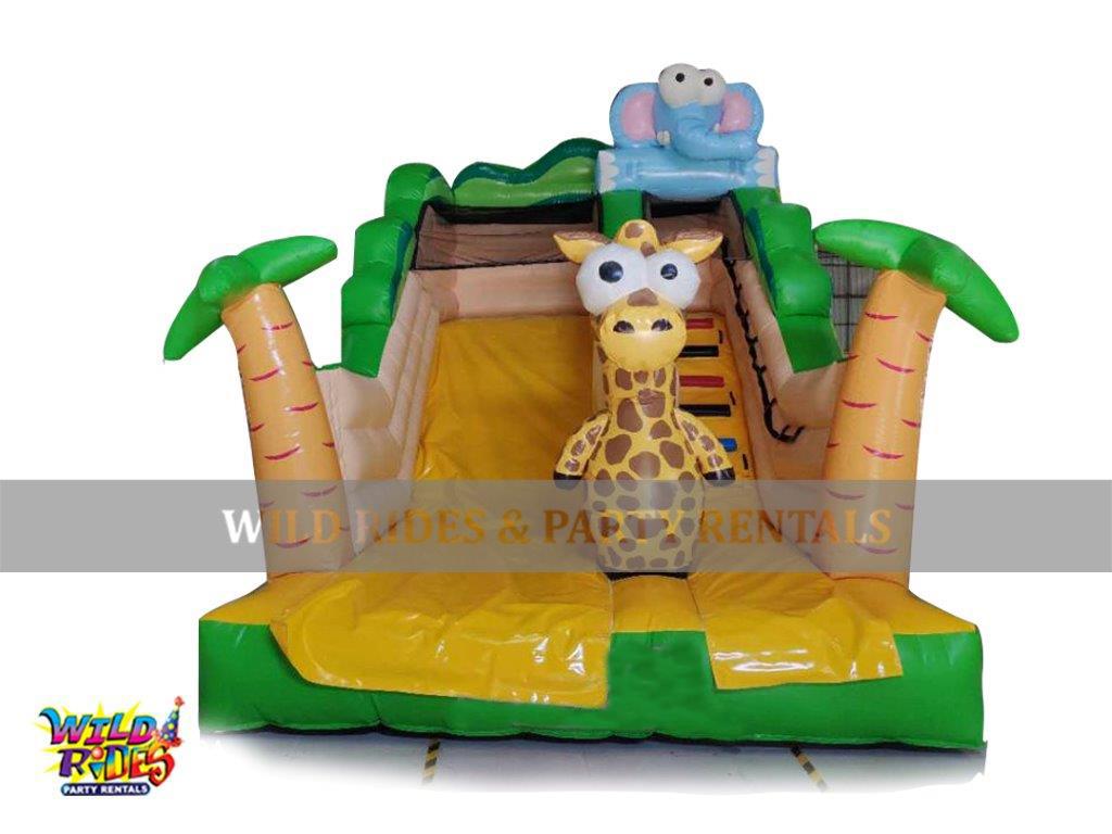 Jungle Themed Climb w/Slide