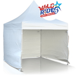 Wild Rides Party Rentals .Design Elements 01