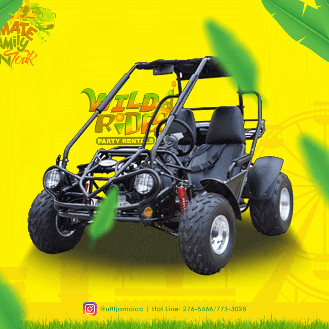 Just imagine the thrill on any of our #gokarts; You, your friend and a cool refr