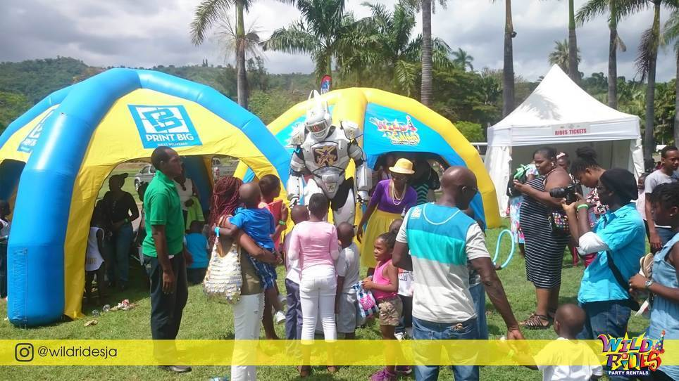 Over 50 Inflatables and Party Rentals for Birthday Parties, Corporate Events and