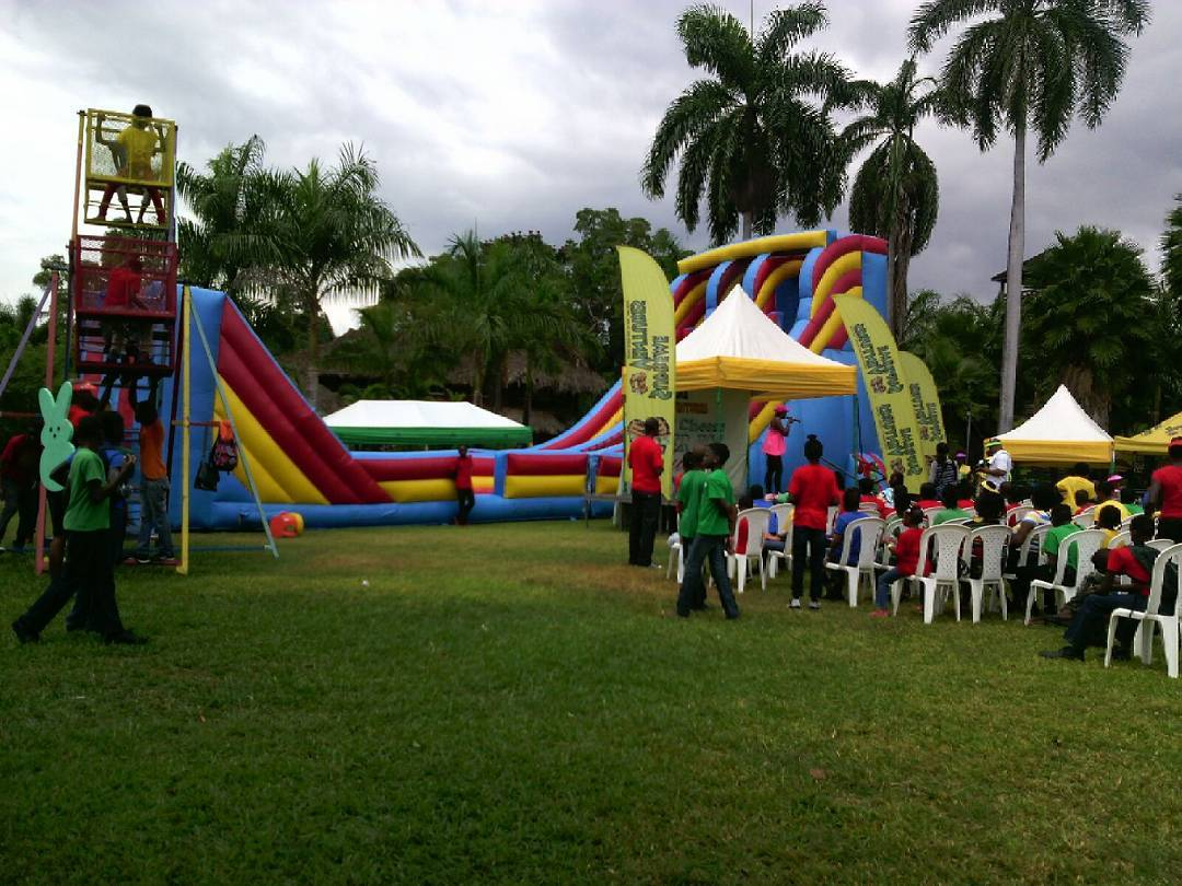 Colors are the smiles of nature.  #inflatables #zipline #mechanical #partyrental