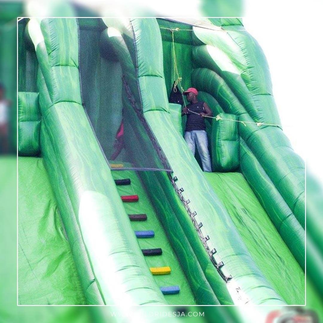 Experience the thrill of our inflatable Amazon Zip Line Ride. Great for all type