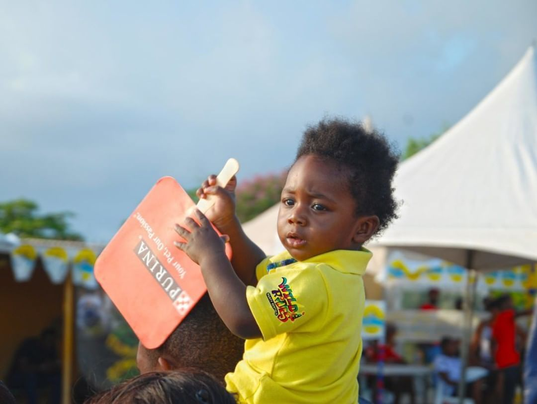 "Highlights of this baby holding @PurinaOneJa fan from #allbreeddogshow. ""Patienc"