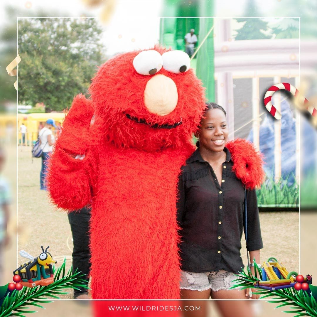 No Elmo party theme is complete without a special birthday wish from this toddle