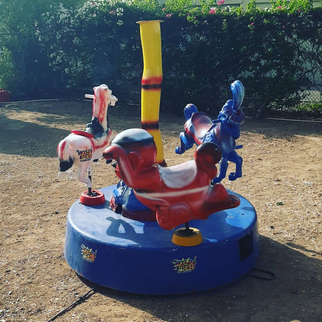 Our toddlers favourite ride. We just can't decide between horse, pony or monkey.