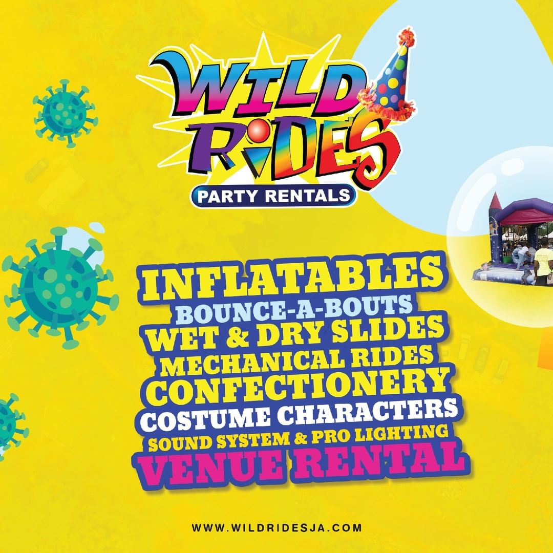 Wild Rides Party Rental⠀has⠀the largest variety of⠀combo bounce & slides, water